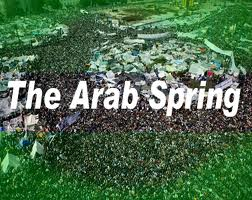 Is the Arab Spring Coming to America?