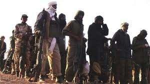 Western big business seek ethnic cleansing of Mali Tuareg: Analyst