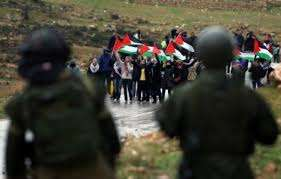 Resistance only way to liberate Palestine