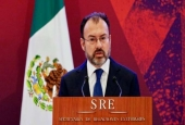 Luis Videgaray -Mexican Foreign Minister.jpg