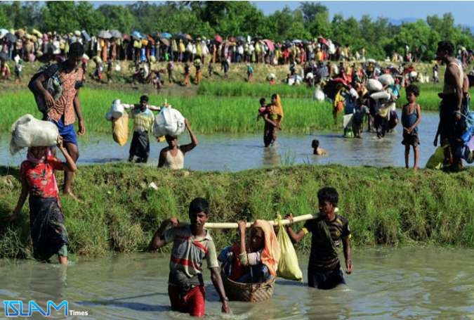 Rights groups urge intl. monitoring of Rohingya's return